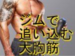 大胸筋をジムで鍛えるマシントレーニング!!筋トレ最重要項目!!