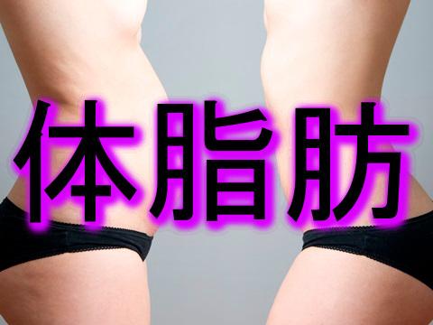 体脂肪を減らす筋トレの方法!自宅でもできる効果的な運動など!